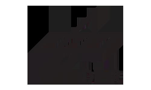 partner_dlr